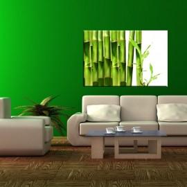 Zielone bambusy - obraz na ścianę do łazienki nr 2085