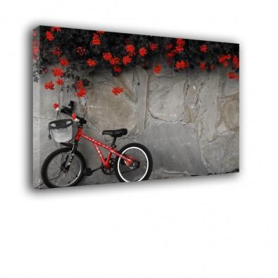 Czerwony rower - obraz na płótnie nr 2109
